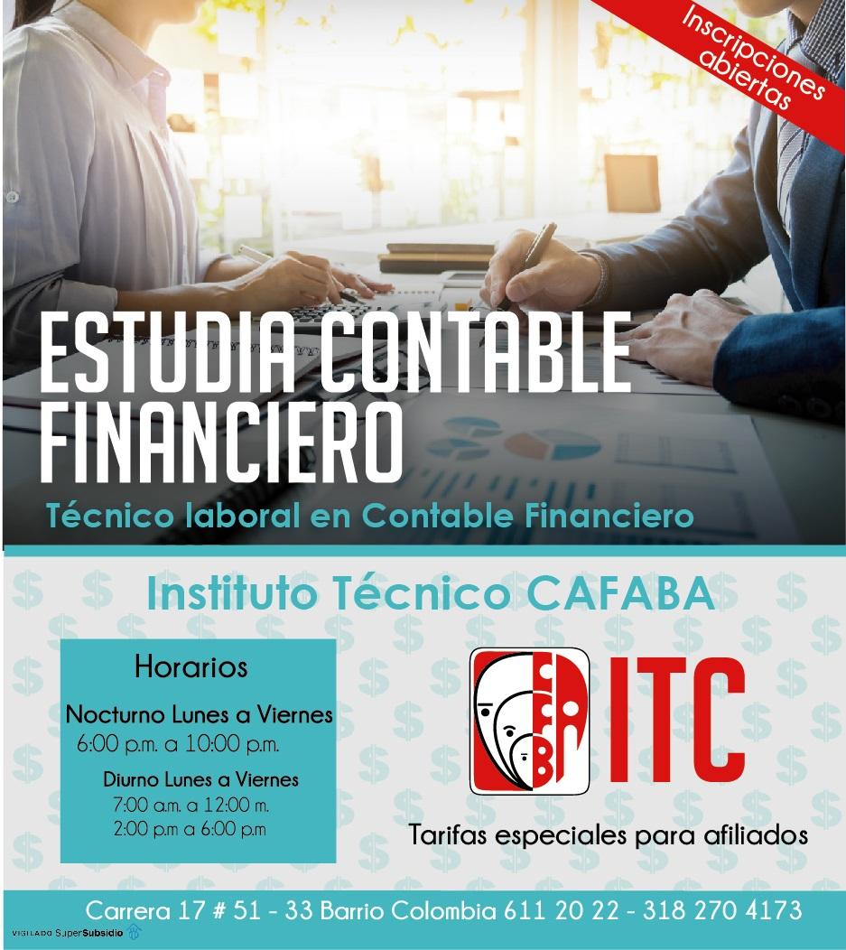 Plantilla ITC Contable financiero
